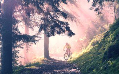 Vivi le Melette con i colori dell'autunno: servizio di noleggio e-bike attivo